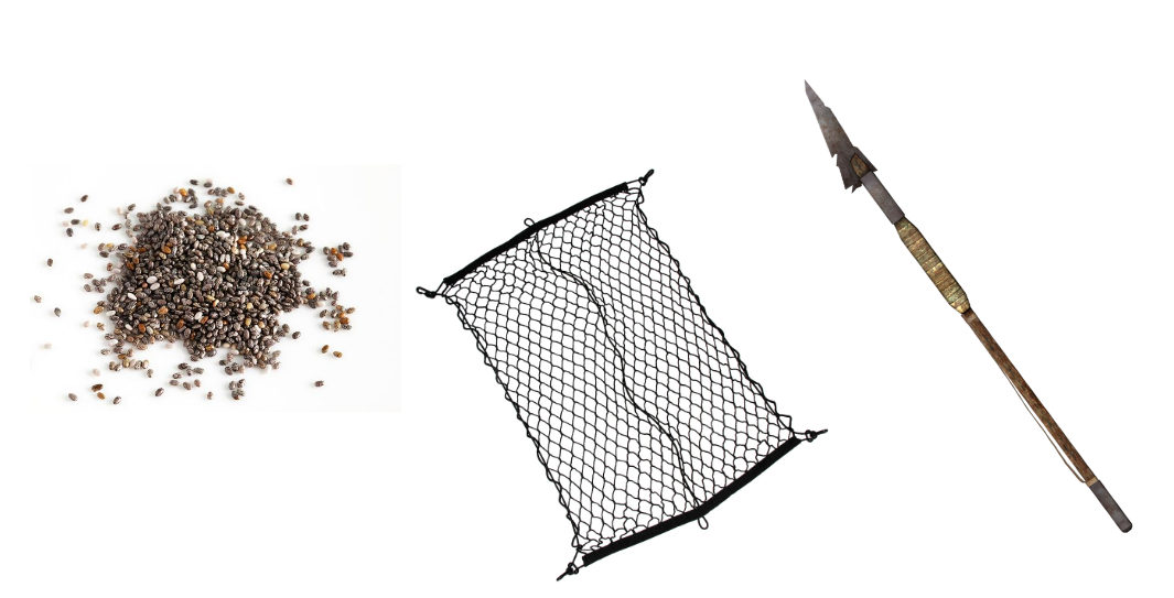 seeds nets spears.png